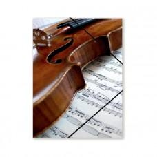 Violin Folder